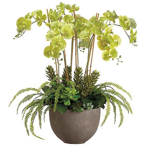 """42"""" Lush Orchid Arrangement, Faux"""