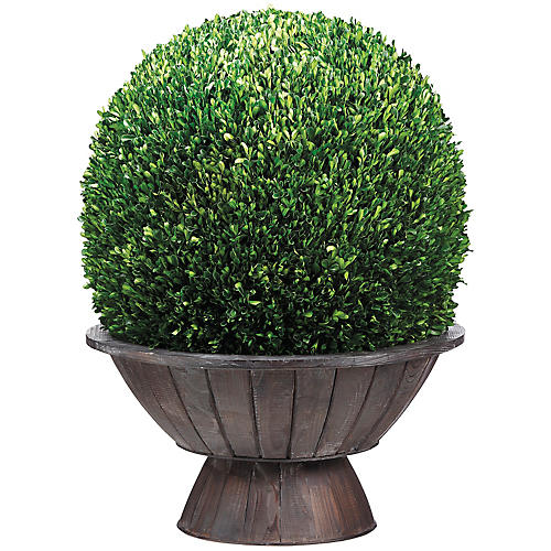 "31"" Boxwood Ball Topiary, Faux"