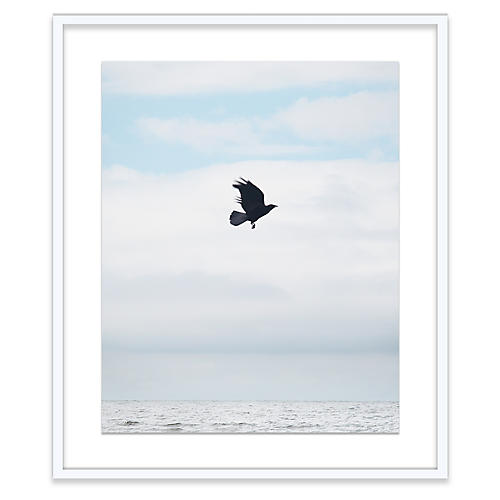 Alex Hoerner, Crow at Sea