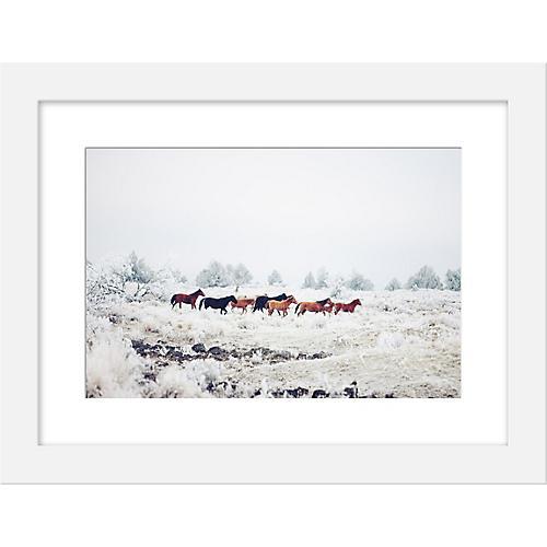 Kevin Russ, Winter Horse Herd