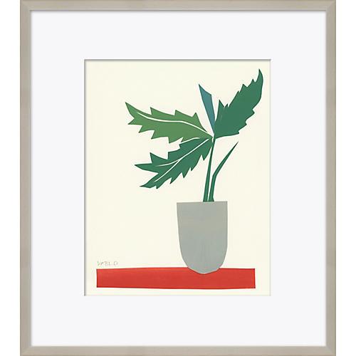 Susan Hable, Still Life Plant