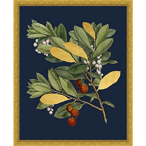 Gold Leaf Navy Branch I