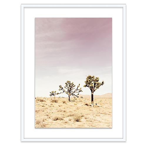 Christine Flynn, Joshua Tree II