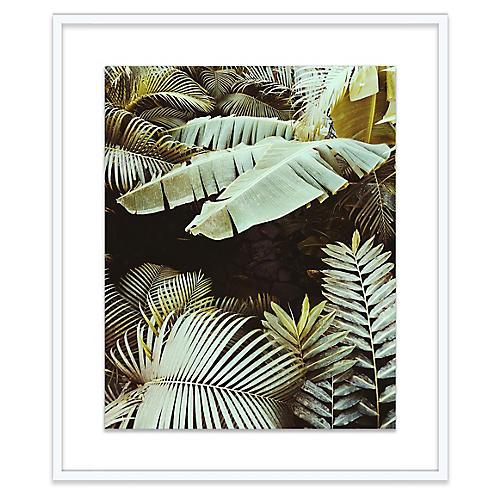 Christine Flynn, Palm Leaves
