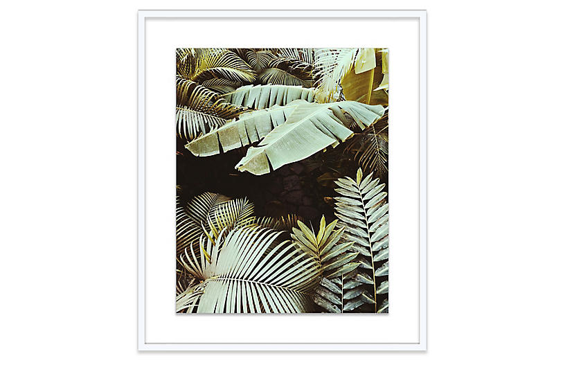 Christine Flynn, Palm Leaves