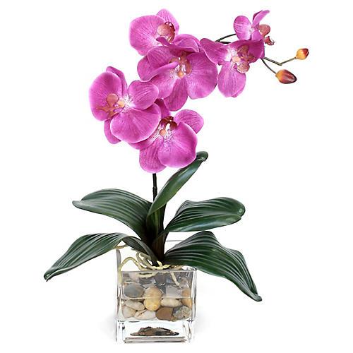 "18"" Fuchsia Orchid w/ Vase, Faux"