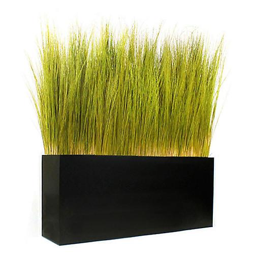 "52"" Spiral Grass w/ Box Planter, Preserved"