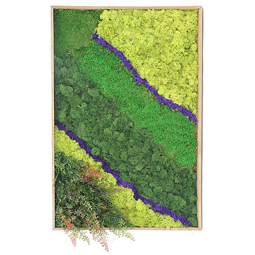 "32"" Moss Wall Piece, Preserved"