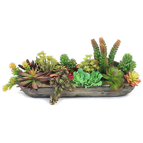 "22"" Mixed Succulents w/ Boat Vessel, Preserved"