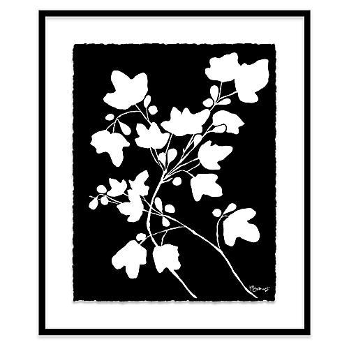 Kate Roebuck, Fig Print