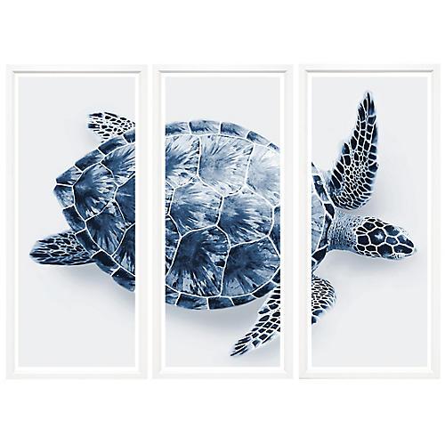 Blue Turtle Triptych