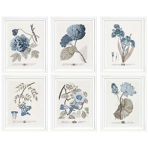 S/6 Imperial Flowers II