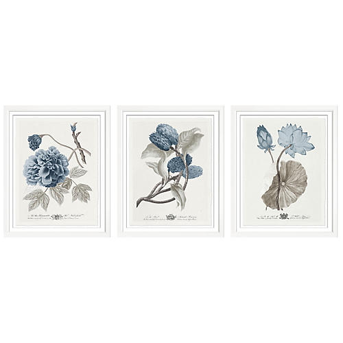 S/3 Imperial flowers III