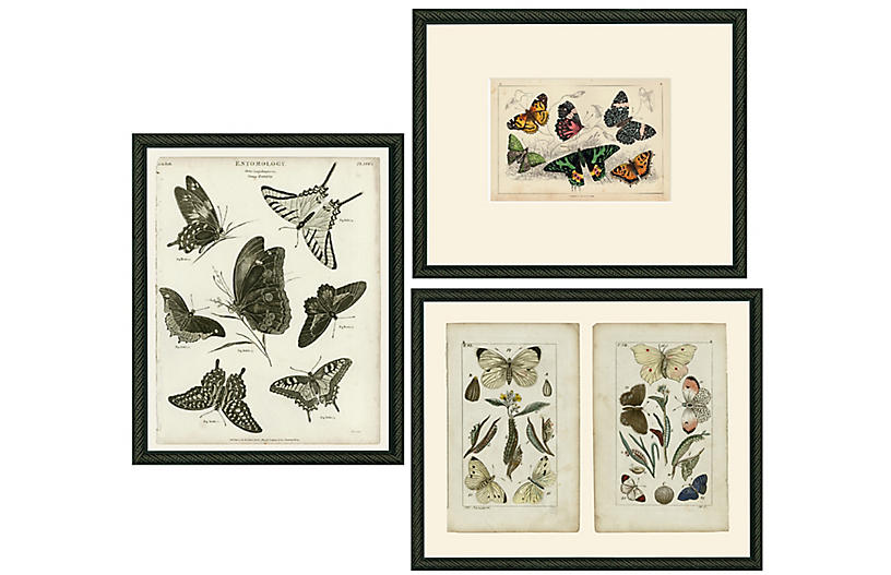 Smith & Co., Three Butterflies