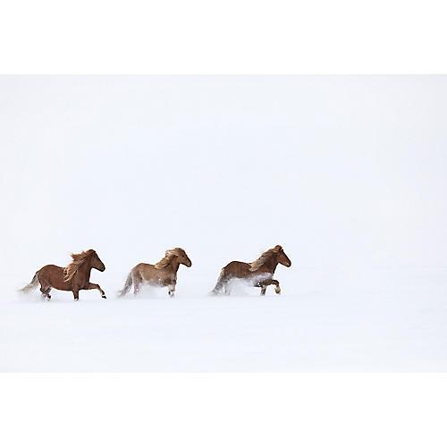 Drew Doggett, Winter's Cover