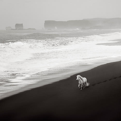 Drew Doggett, Ocean Escape