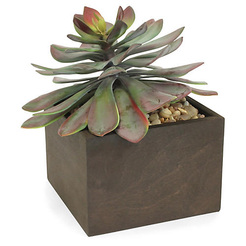 "12"" Large Succulent Flower w/ Box Planter, Faux"