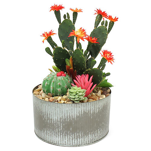"12"" Blossom Cactus w/ Distressed Vessel, Faux"