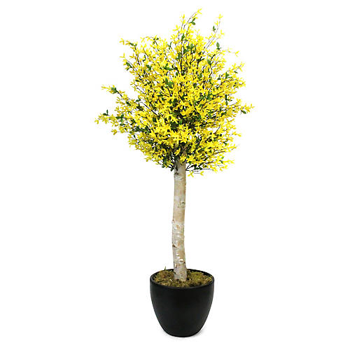 "60"" Yellow Blossom Tree w/ Planter, Faux"