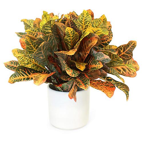 "22"" Yellow Croton Plant w/ Vase, Faux"