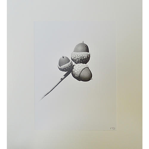 Richard Bowers, Acorn Study
