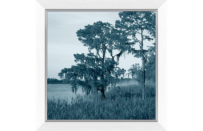 Navy Landscape Marsh