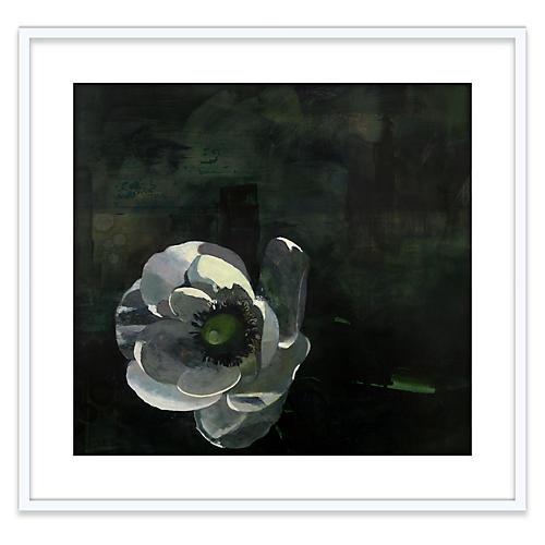 Susan Ashworth, Single Anemone
