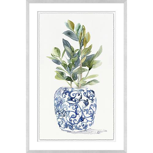 Plant in Ginger Vase I