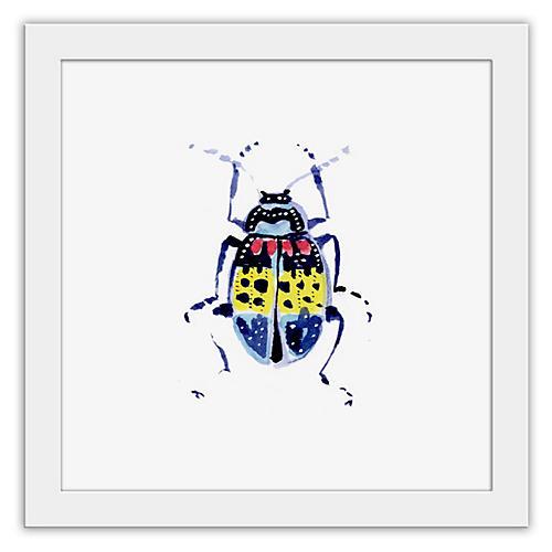 Cathy Graham, Lilium Beetle