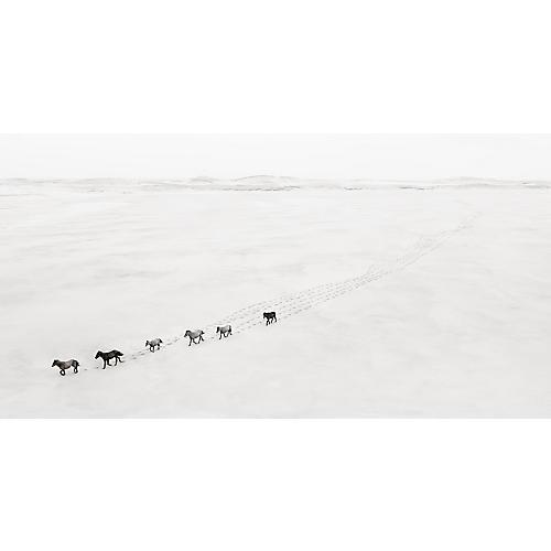 Drew Doggett, Caravan