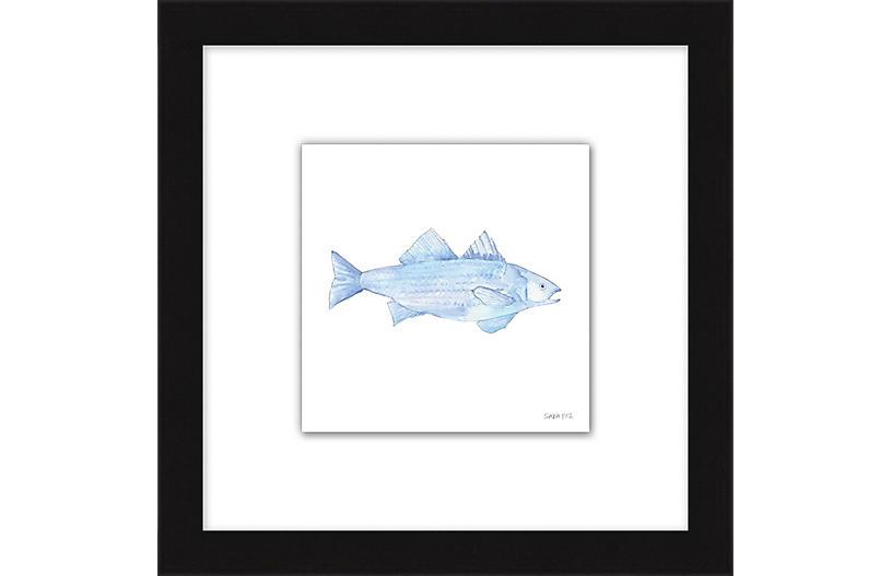 Sara Fitz, Blue Fish