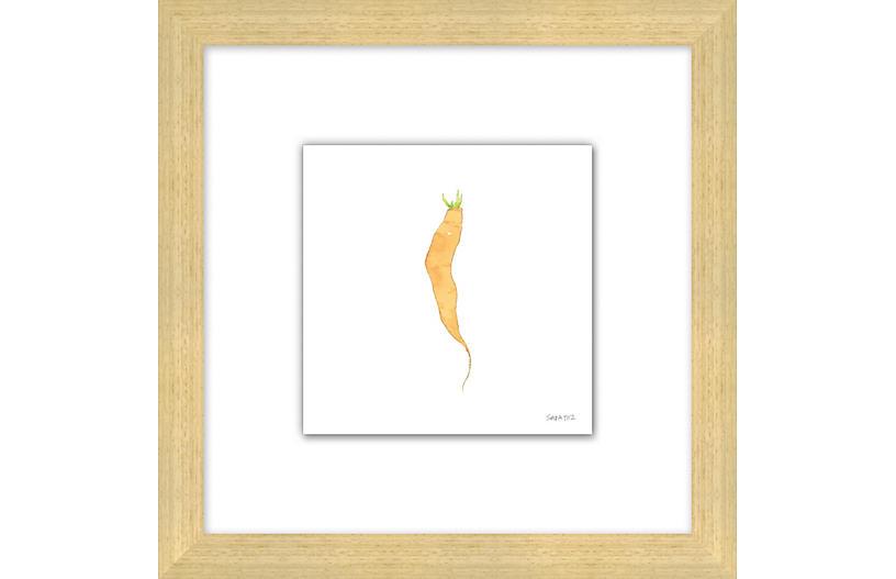 Sara Fitz, Carrot 3