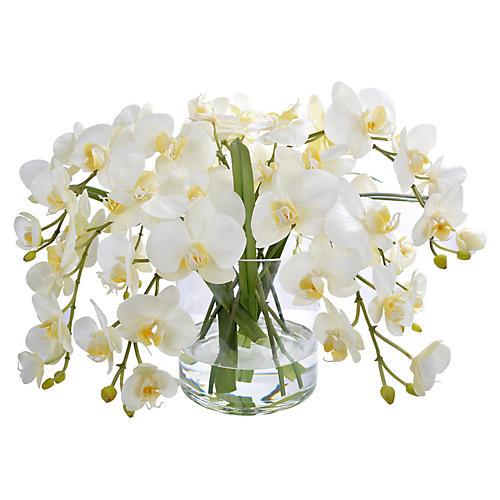 "21"" Phalaenopsis Orchid w/ Round Vase, Faux"