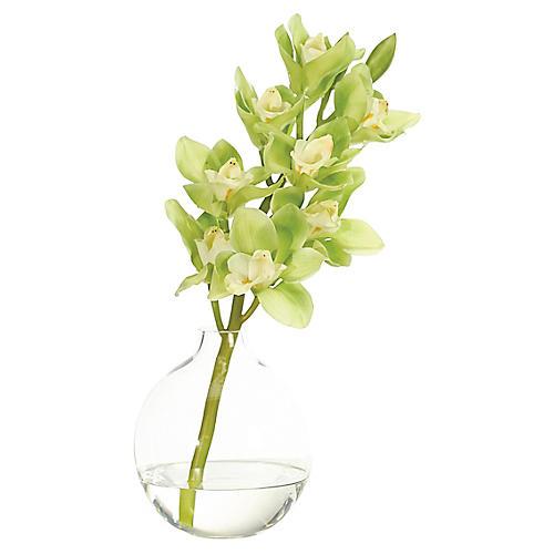 "12"" Cymbidium Orchid in Bubble Vase, Faux"