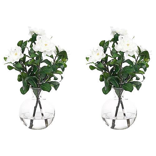 S/2 Gardenias in Vase, Faux