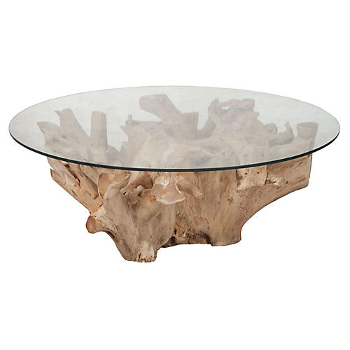Morris Teak Root Coffee Table, Natural
