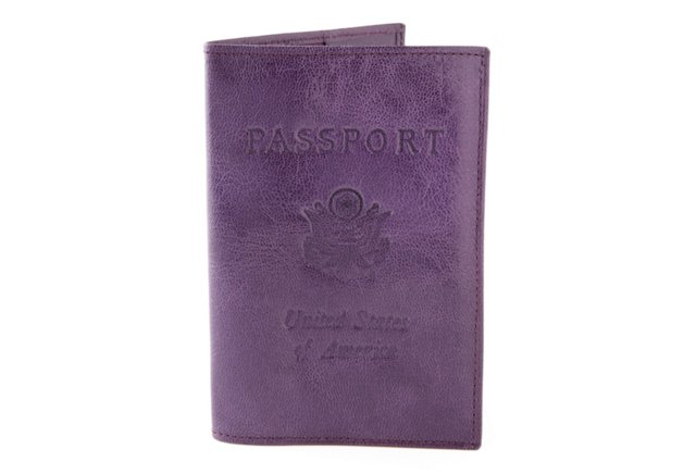 Passport Case, Purple