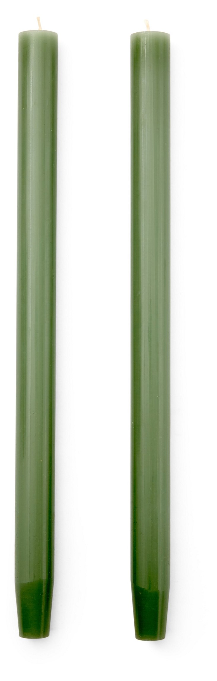 S/4 Taper Candles, Fern