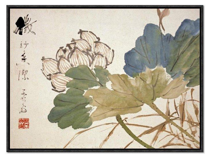 Xu Gu, Lotus