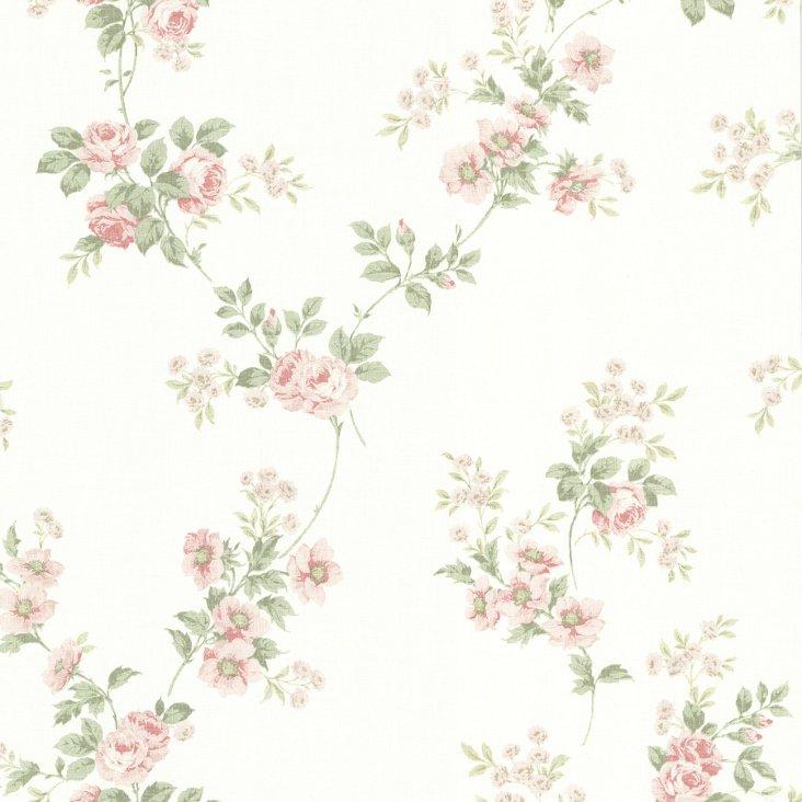 Blossom Rose Trail,  Pink