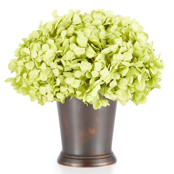 Hydrangea Basil in Julep Cup, Green