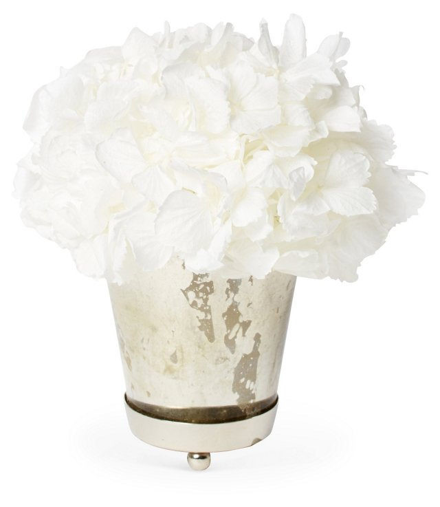 "7"" Hydrangea in Julep Cup, Preserved"