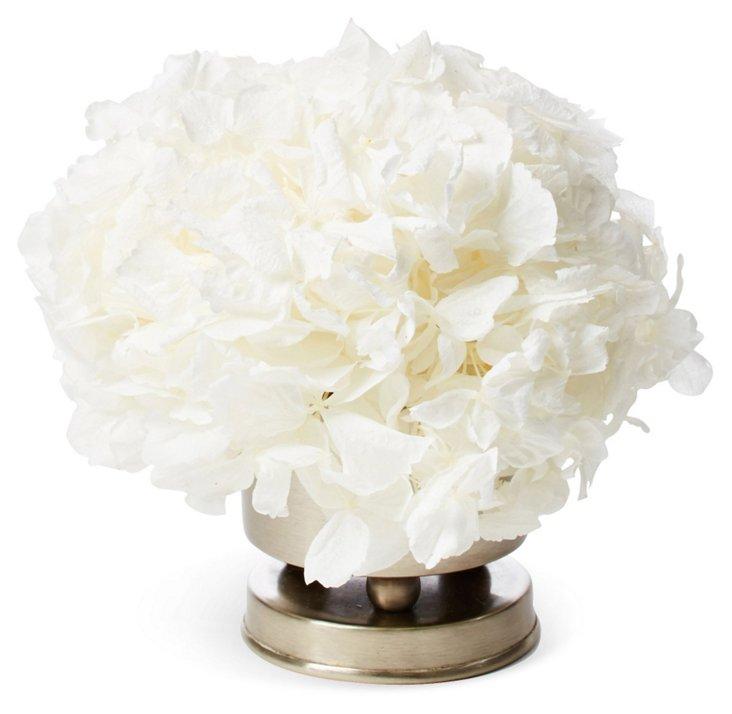 """5"""" Hydrangea in Vase, Preserved"""