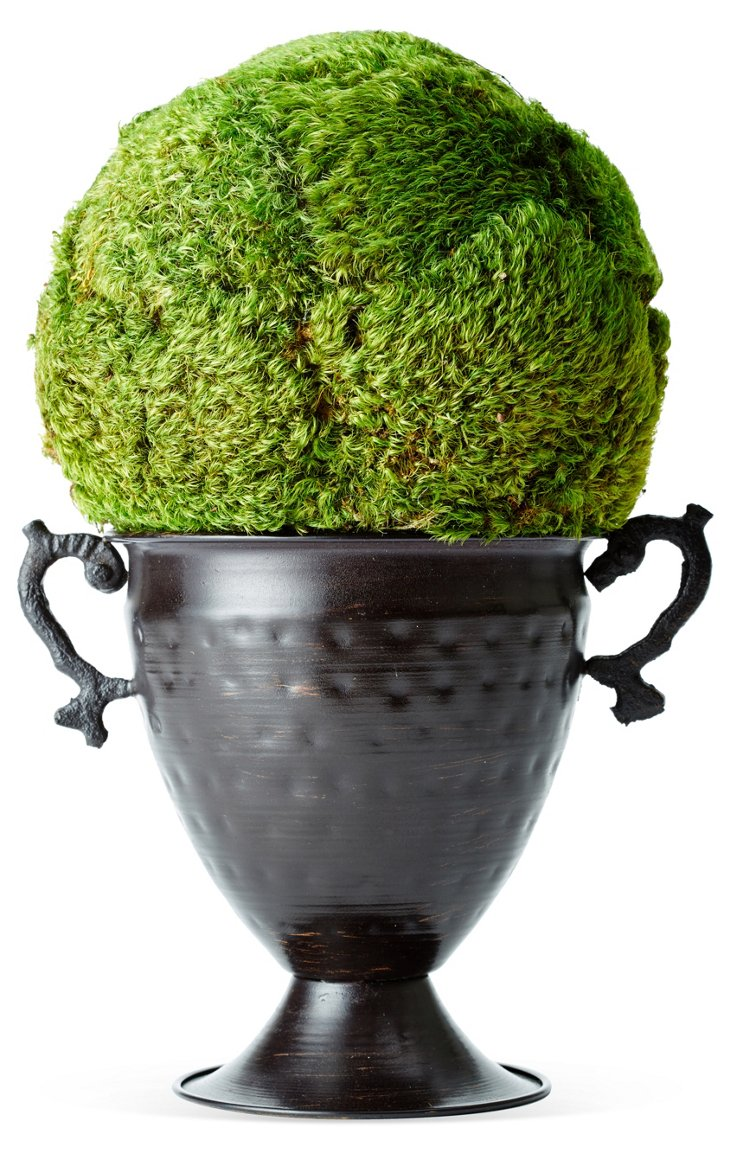 "12"" Moss Topiary Ball in Vase, Preserved"