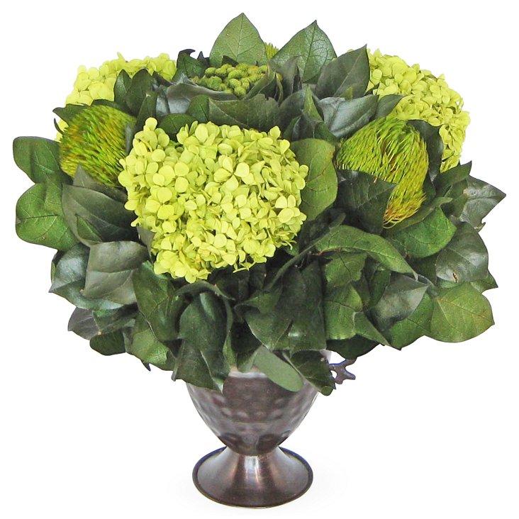 "15"" Banksia & Hydrangea Basil, Preserved"