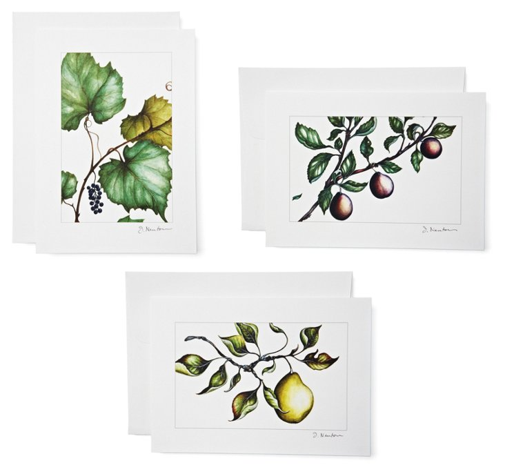 S/6 Note Cards, Fruit