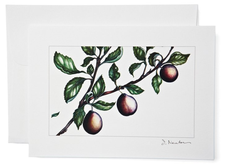 S/12 Note Cards, Plums