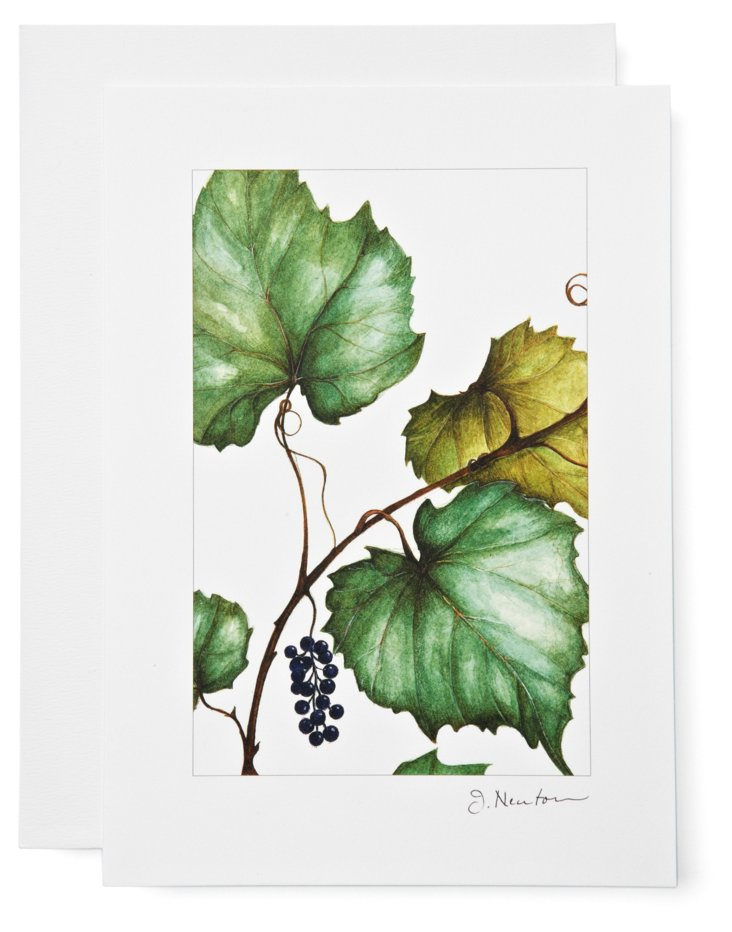 S/12 Note Cards, Grapes
