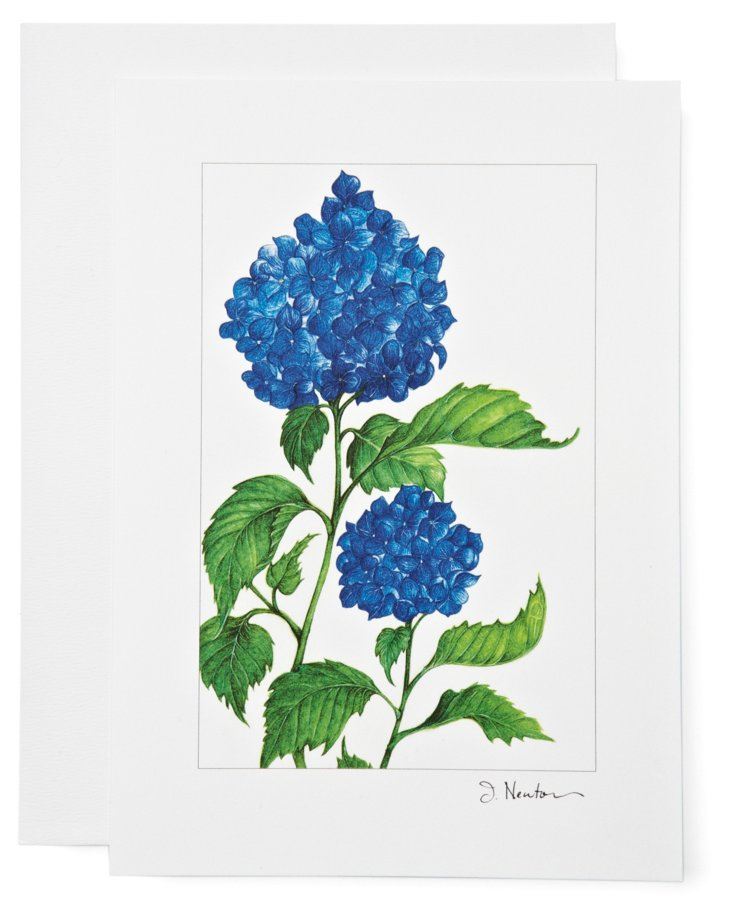 S/12 Note Cards, Hydrangea