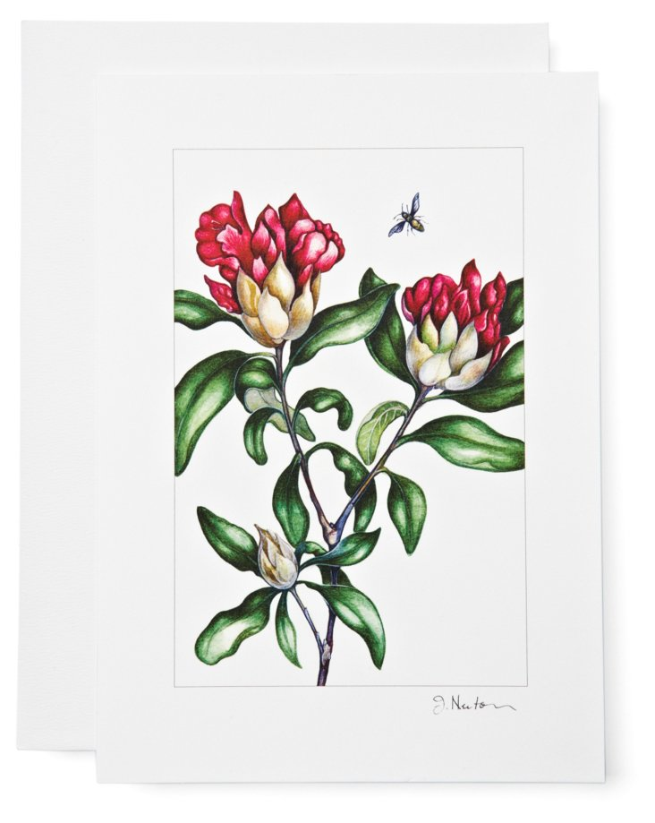 S/12 Note Cards, Rhododendron